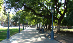 Plaza Independencia en Mendoza