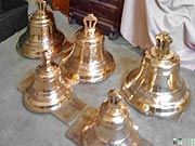 Copper Bells Pachuca