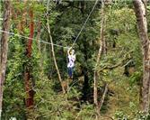 Canopy: An experience for thrill-seekers.