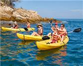 Aquatic Adventures In Puerto Vallarta