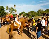 Learn Horseback Riding in Los Cabos