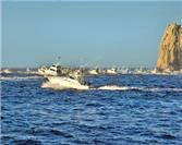 Los Cabos Tuna Jackpot Fishing Tournament: Exciting Sport Fishing in the Region