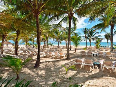 Catalonia Playa Maroma Hotel In Punta Riviera Maya Mexico Booking