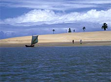 Tour Mouth of Sao Francisco River
