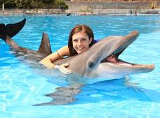 Tour Dolphin Encounter Cabo Dolphins