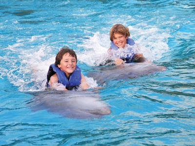 Signature Dolphin Swim Vallarta Adventure Tour | 1 TOUR GRATIS!