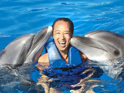 Vallarta Adventure Signature Dolphin Swim Tour | CHILD FREE