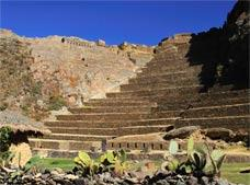 Pisac Market and Ollantaytambo Fort with Lunch Tour