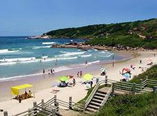 Full Day Praia da Pipa Tour