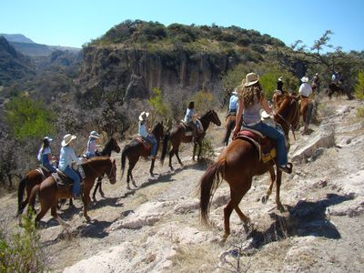Half-day Horseback Riding Tour