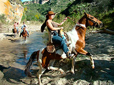 Half-day Horseback Riding Tour with Rappel