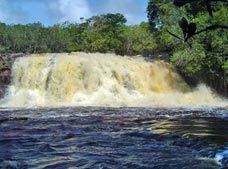 Presidente Figueiredo Waterfalls Tour