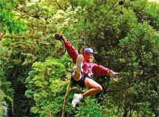 Canopy Adventure Tour in San Jose
