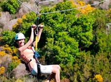 Catalina Island and Zip Line Eco Tour