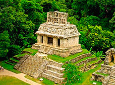 Palenque and Surroundings Circuit Tour