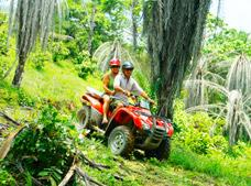 Canopy, Mule and ATV Tour | 20% Off