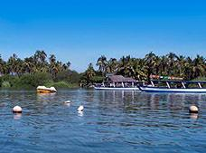 Encounter with locals at the Coyuca Lagoon ¡PROMOTION!