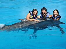 Tour Dolphin Encounter con Aquaventuras Puerto Vallarta