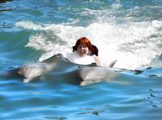 Tour Dolphin Royal Swim Puerto Aventuras