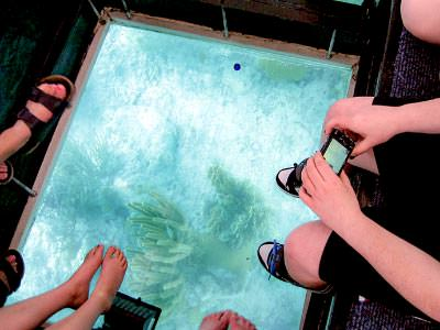 Key West Tour and Glass Bottom Boat Ride