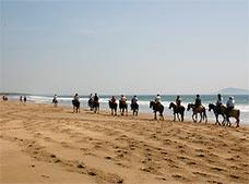Horseback Riding on the Beach Tour