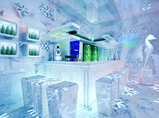 Tour 	Ice bar