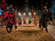Medieval Times Dallas Tour