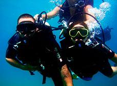 Beginners Open-Water Dive Tour