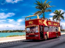 Tour Miami Sightseeing - Hop on Hop off