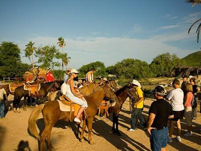 Pacific Beach Horseback Safari Tour |20% OFF
