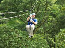 Rainforest Canopy Ziplining Tour