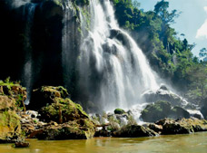 Rappel in Sima Of Las Cotorras and Visit Aguacero Waterfall