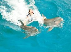 Dolphin Royal Swim Punta Cana
