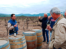 Ancient Wine Route Tour