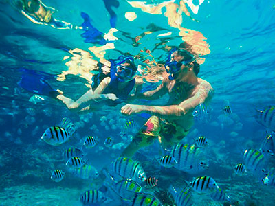 Saona Adventure and Snorkel Tour