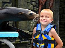 Sea Lion Discovery Cozumel Tour