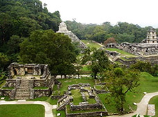 Lacandon Jungle and Palenque Tour