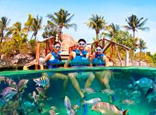 Xel-Ha All Inclusive Tour with Transportation.