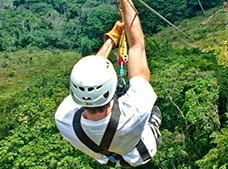Zip Lines and Monkey Jungle Tour