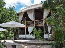 Jolie Jungle Eco Hotel – Ruta de los Cenotes